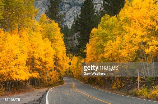 USA, California, Eastern Sierra, Autumn landscape : Stock Photo