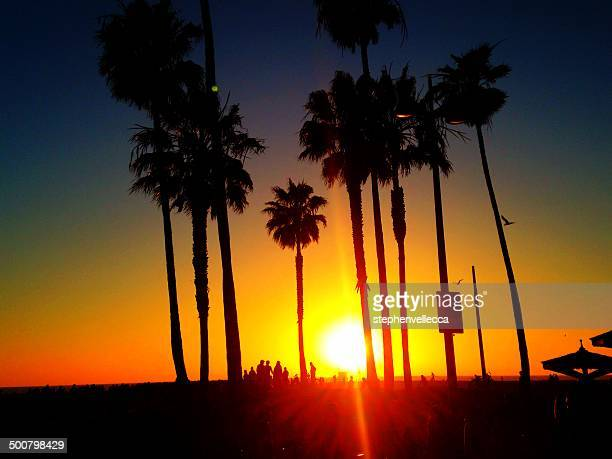 USA, California, Los Angeles, Venice Beach at Sunset