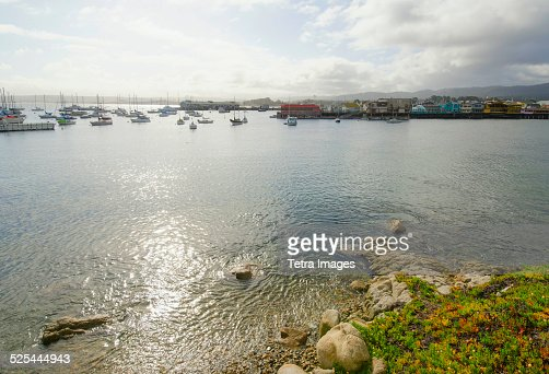 USA, California, Monterey, View of tranquil bay on sunny day