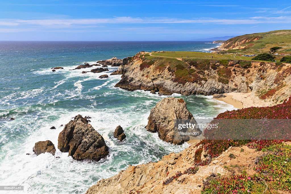 USA, California, Pacific Coast, Sonoma County, Sonoma Coast State Beach, Bodega Head