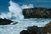 USA, California, Point Lobos, waves splashing on rocks at Pacific coast