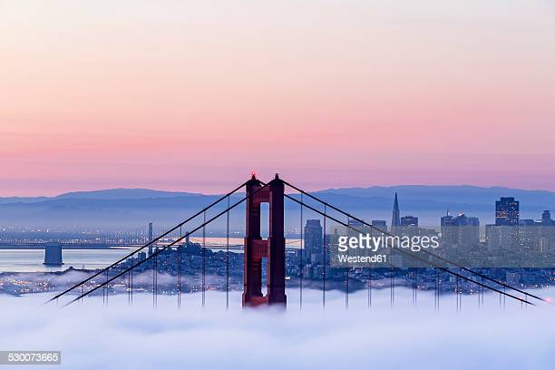 USA, California, San Francisco, skyline and Golden Gate Bridge in fog seen from Hawk Hill