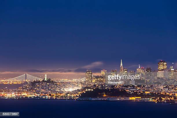 USA, California, San Francisco, skyline and Oakland Bay Bridge at the blue hour seen from Hawk Hill