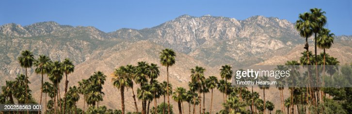 USA, California, San Jacinto Wilderness, palm trees in foreground