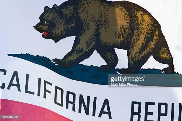 USA California State Flag Detail