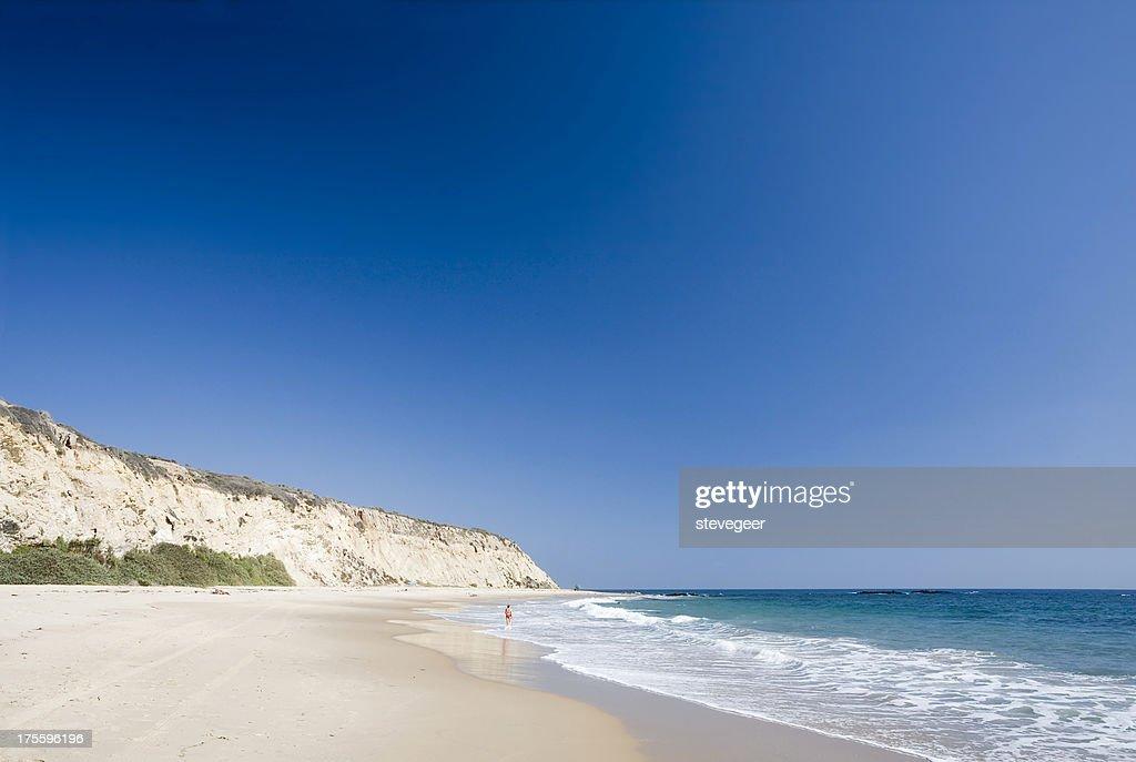 Californian Beach and Pacific Ocean