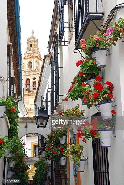 Calle de las Flores