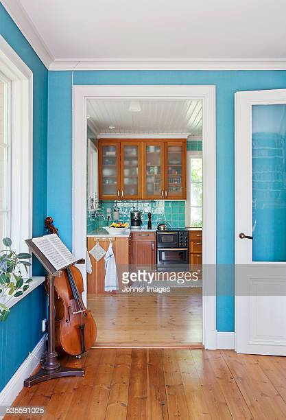 Callo in room, kitchen on background