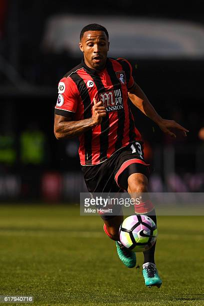 Callum Wilson of Bournemouth in action during the Premier League match between AFC Bournemouth and Tottenham Hotspur at Vitality Stadium on October...