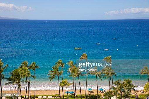 Calm blue Pacific Ocean, boats and palm trees, Maui : Foto de stock