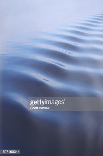 Calm water ripples : Stock Photo