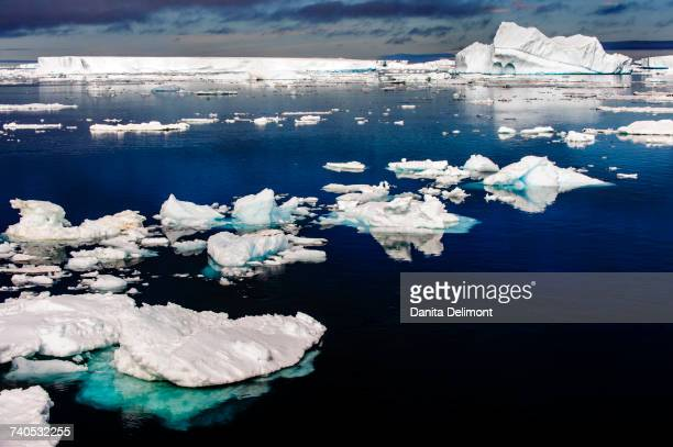 Calm waters with ice floes, Antarctic Sound