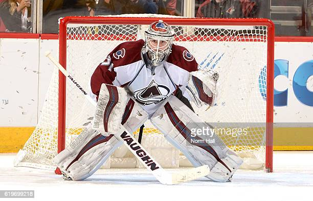 Calvin Pickard of the Colorado Avalanche looks to make a save against the Arizona Coyotes at Gila River Arena on October 29 2016 in Glendale Arizona