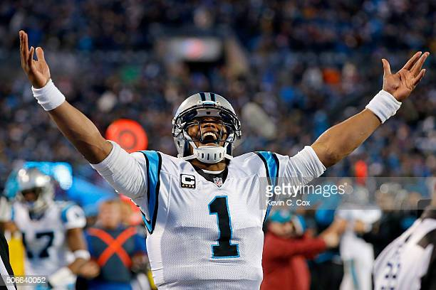 Cam Newton of the Carolina Panthers celebrates Ted Ginn Jr #19 touchdown in the first quarter against the Arizona Cardinals during the NFC...