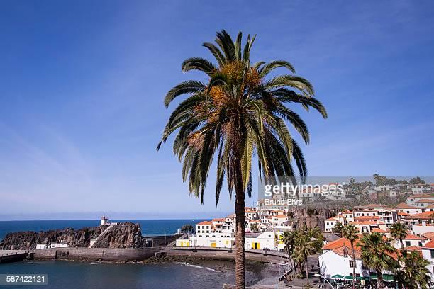 Camara de Lobos village, Madeira