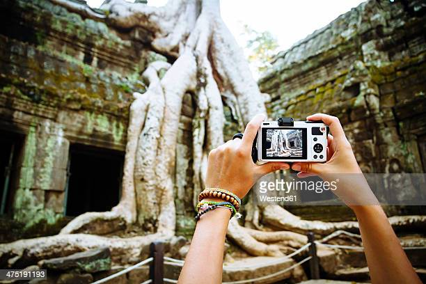 Cambodia, Angkor Wat, Woman takes pictures of the famous tree in Ta Prohm Temple