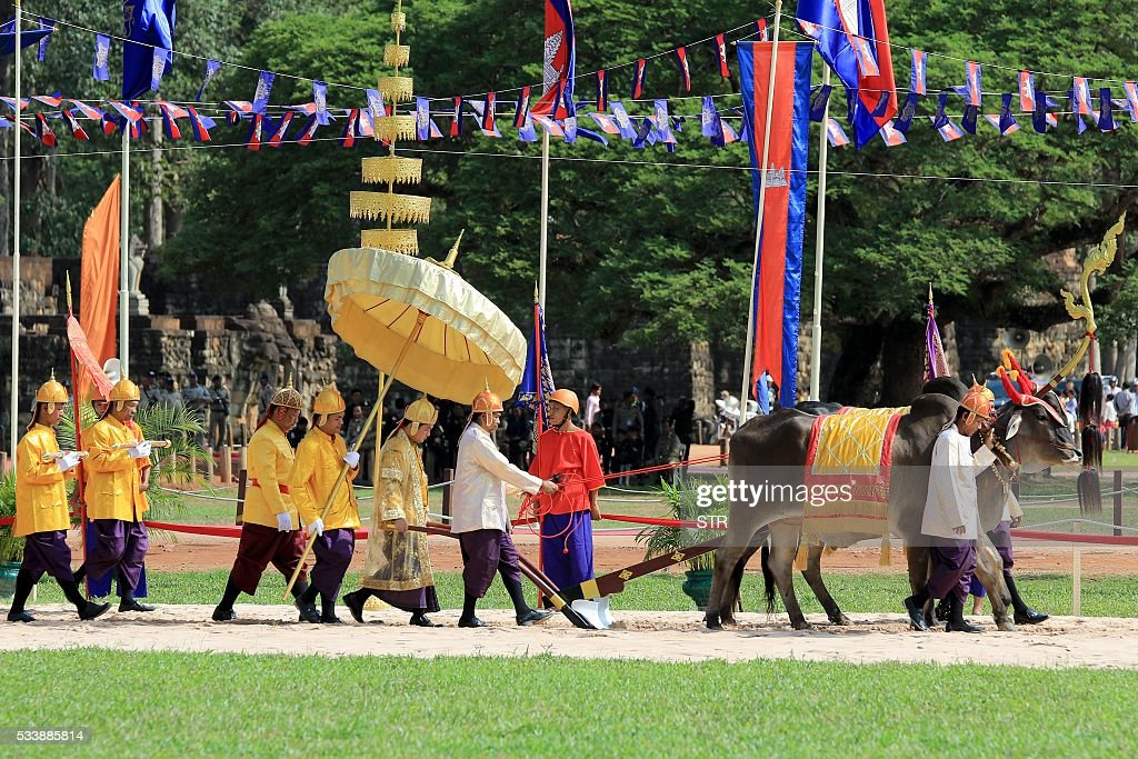 Cambodian Governor of Siem Reap province Khim Bun Song (Center L) plows during the annual royal plowing ceremony at Angkor complex in Siem Reap province on May 24, 2016. Despite Cambodia hit by the worst drought in half a century, royal oxen on Tuesday predicted during an ancient ritual that the kingdom will see 'bountiful' agricultural harvest this year. / AFP / STR