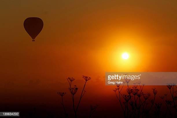 Camden nsw sunrise