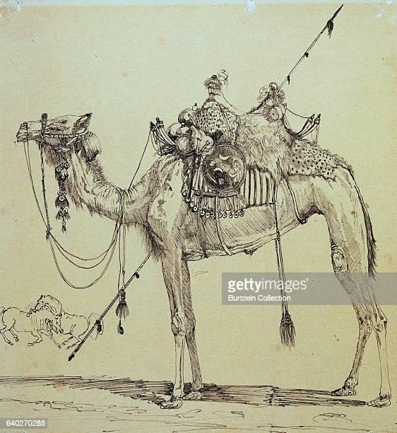 Camel by Rodolphe Bresdin