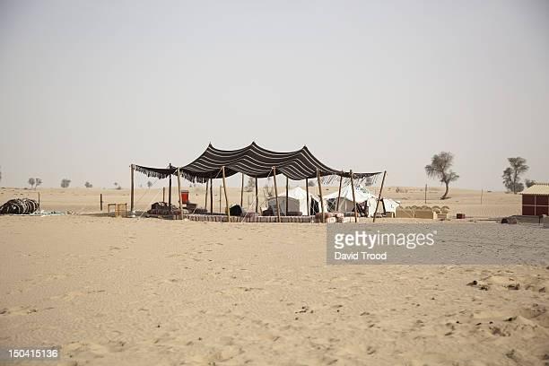 Camel camp near Dubai
