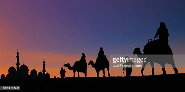 Camel caravan arriving at mosque, Abu Dhabi, United Arab Emirates