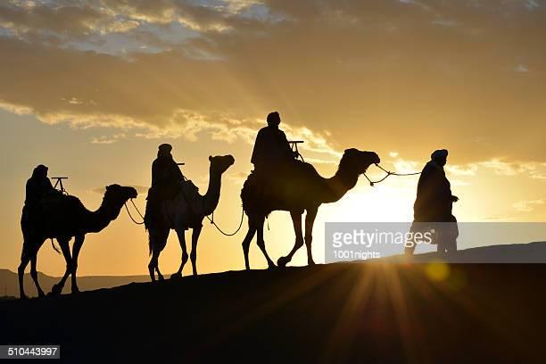 Kamel Karawane in Marokko