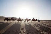 Camel caravan in the desert on the silk road China
