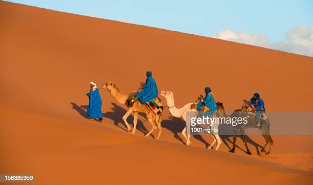 Kamel Karawane in der Sahara