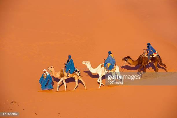 キャメルの Caravan で、サハラ砂漠