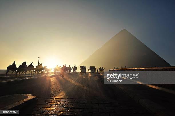 Camel queue paced towards to Grand Pyramids