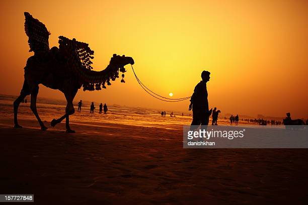 Camel Rider at Sunset, Clifton Beach, Karachi - Pakistan