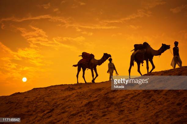 Camel Riders in the Desert