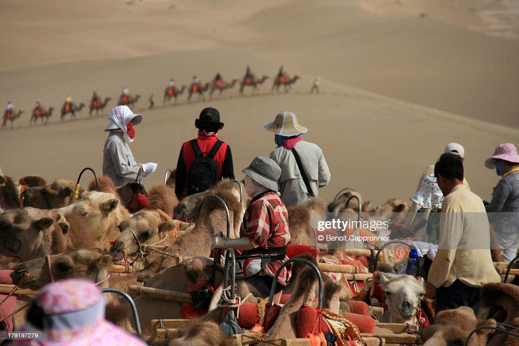 Camel riders in the Taklamakan desert