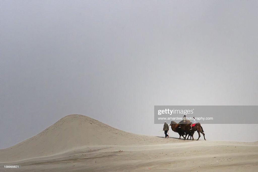 Camel riders on deser