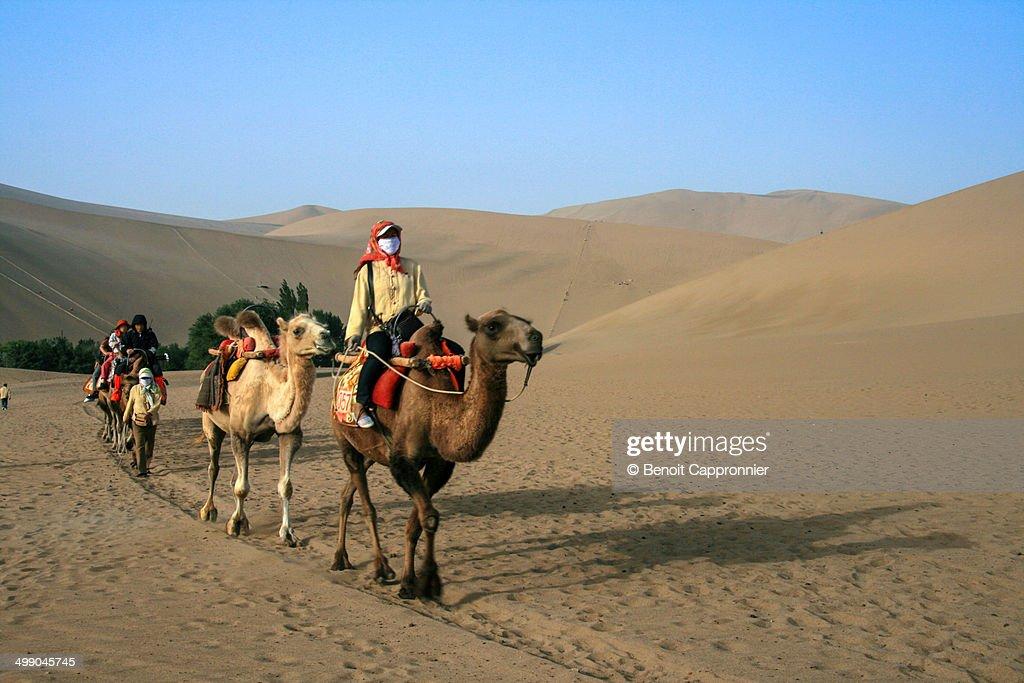 Camel riding, Taklamakan desert, Gansu, China