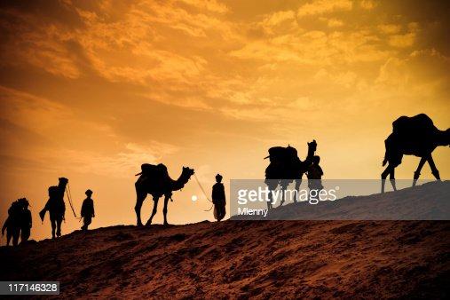 Camel safari in the desert