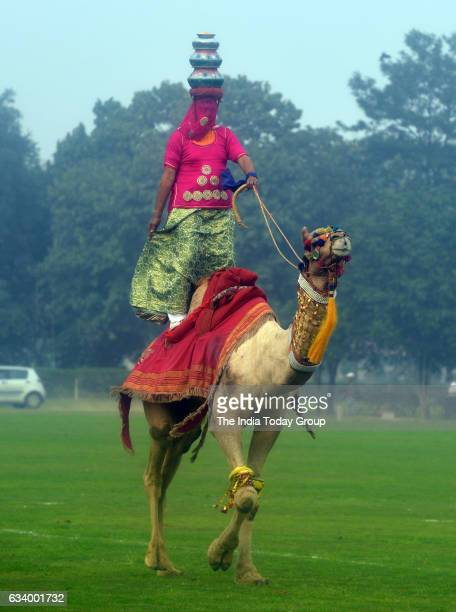 Camel Show and Canine Show by BSF at Jaipur Polo Ground in New Delhi