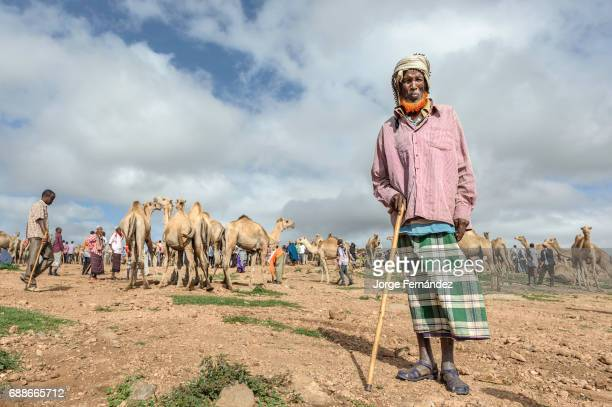 Camel trader dressed in a traditional way and beard dyed in red in a camel market