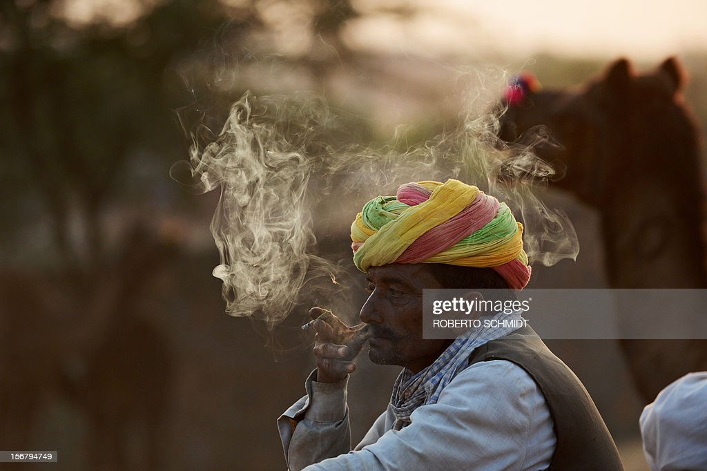 A camel trader smokes an Indian cigarrette called Bidi at the camel fair grounds in the outskirts of Pushkar on November 21, 2012. The annual five-day camel and livestock fair, held in the town of Pushkar in the state of Rajasthan is one of the world's largest camel fairs, and apart from buying and selling of livestock it has become an important tourist attraction. AFP PHOTO/Roberto Schmidt