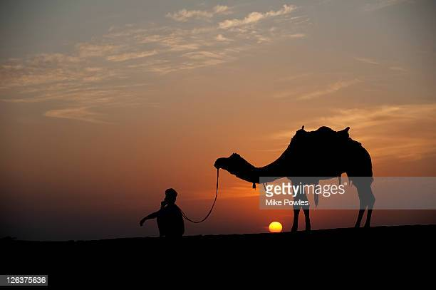 Camel (Camelus dromedarius) train and leader on mobile phone, silhouetted at sunset, Rajasthan, India