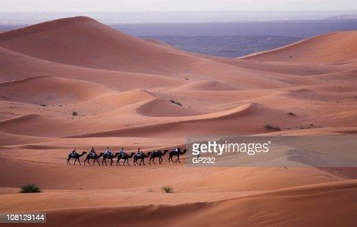 Camel train moving across the Sahara Desert