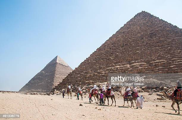 Camel train passing in front of the pyramids