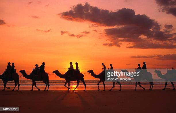 Camel trek at sunset along Cable Beach.