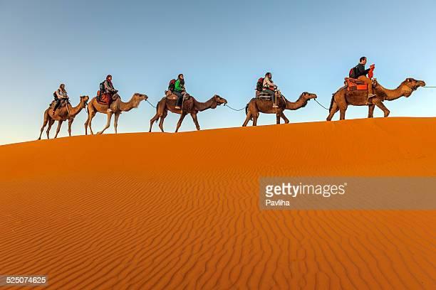 Kamel-Trekking, Erg Chebbi-Dünen bei Sonnenaufgang, Marokko, Afrika