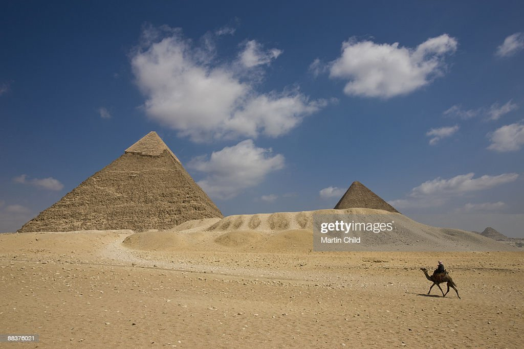 Camel walking towards Pyramid