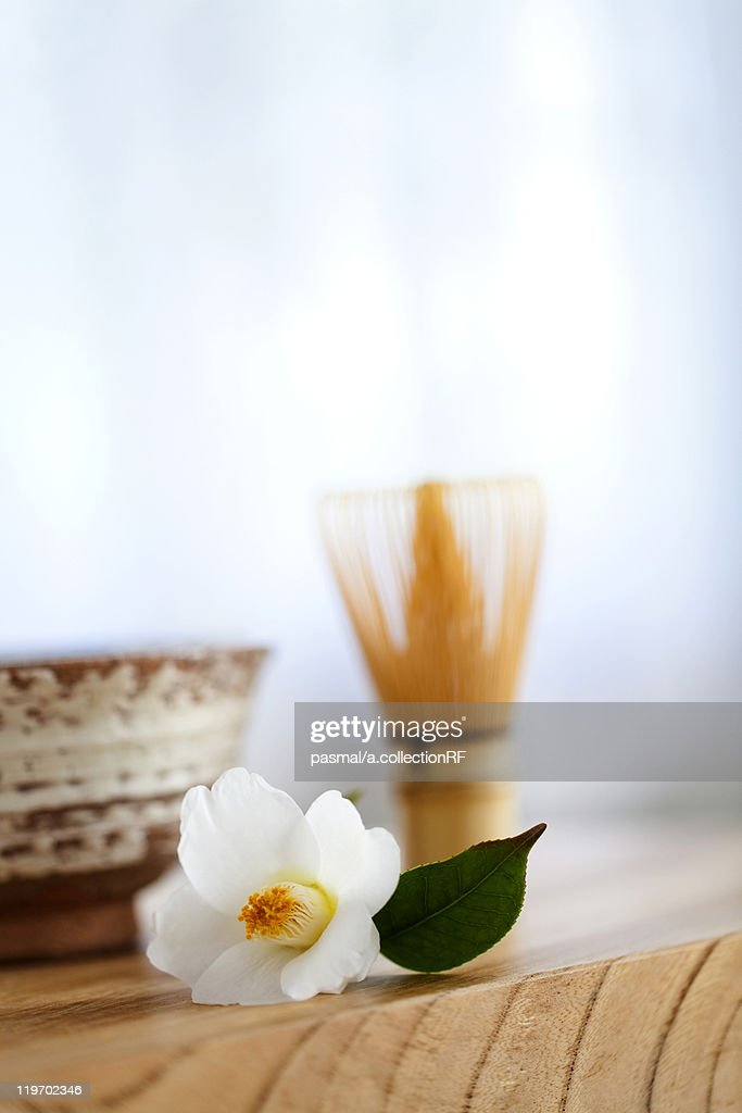 Camellia Flower and Japanese Tea Set : Stock Photo
