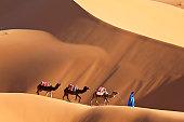 Camels & Dunes, Erg Chebbi, Sahara Desert, Morocco