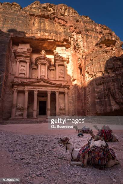 Camels with the Treasury of Petra in Jordan