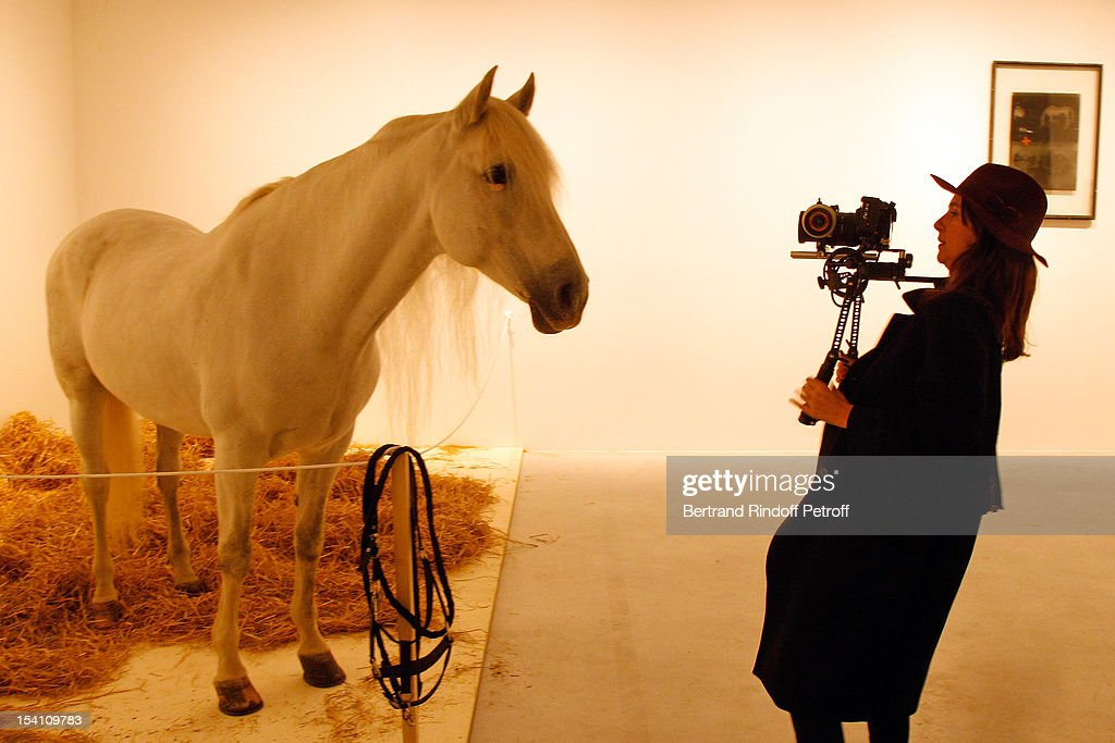 A camerawoman takes a video of a horse, which is part of a piece by artist Joseph Beuys, at the exhibition 'Iphigenie', during the opening of Thaddaeus Ropac's new gallery on October 13, 2012 in Pantin, France.