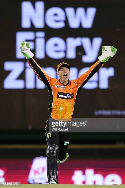 Cameron Bancroft of the Scorchers unsuccessfully appeals for the wicket of Rob Quiney of the Stars during the Big Bash League match between the Perth...
